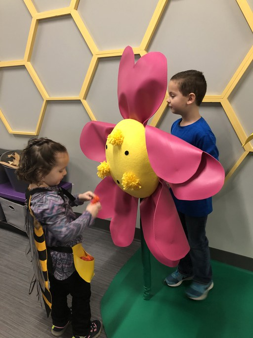 Discovery Space's Bee Hive Exhibit