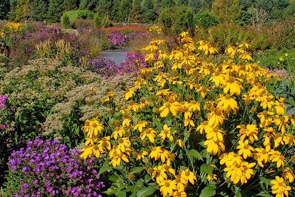 Garden Network - Arboretum