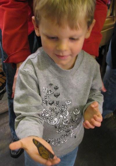 Boy holding butterfly